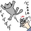 実家の猫に避けられているらしい。