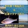 那珂湊の稚鮎釣り→北浦のタナゴ釣り遠征!2020