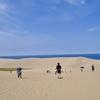 砂丘って砂浜じゃね?