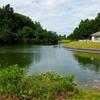 杜々の森名水公園の池(新潟県栃尾)