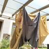 我が家のテントの乾かしかた