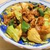 簡単!!回鍋肉(ホイコーロー)の作り方/レシピ