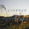 【削除済】辻堂海浜公園にて