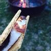 【アメリカキャンプ】嵐のAssateague state park campingの感想(後半)