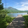 【絶景】標高1500mにある高原の『女神湖』でランニング【高地トレーニング】