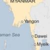 """ミャンマーで活発な""""ツバメの巣""""ビジネス"""