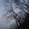 🌁凍てつく霞のビル群❄この時期に海外出張⑩