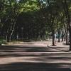 Shirakawa Park in the morning