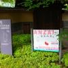 世田谷文学館探訪『イラストレーター安西水丸展』