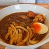 つめたい麺に半熟卵温かいカレー鳥天2ヶ付