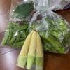タイ北部からのお取り寄せ野菜
