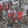 【カビ対策】~これからの冬の季節に気をつけたいカビ対策について解説!~