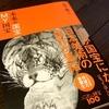 人気美術史家の鋭い審美眼!美術読み物「未来の国宝 MY国宝」【美術書レビュー】