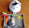 なまこ家のネコたち、オモチャとゴミは紙一重。