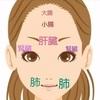 乳がん治療 内臓と顔のシワ② 命の臓器・腎臓(じんそう)