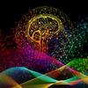 【不安解決法】人間の認識は、リアルタイムの合成。ただ「今ここ」に集中すれば、万事解決。