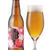2016年春 お花見で飲みたい おすすめ春限定クラフトビール7選