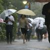 九州・山口で大雨、一部に避難指示も…1人けが
