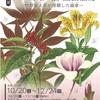 山田壽雄が描く園芸植物