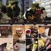 illuminart〜Tokyo Metropolitan spazio d'arte〜♬*゚