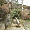梅まつり4(山口県光市、冠山総合公園)