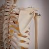 骨のズレで痛みが出て習慣を改善するチャンスに。