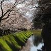 金沢城の内堀
