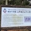 三重のお散歩〜「江」ゆかりの本城山公園
