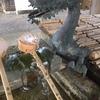 年始の参拝 賀茂神社