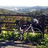埼玉県毛呂山の桂木観音に登ってきました。時間がないけどややきつい坂が登りたいという人におすすめ!