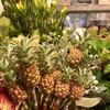 珍しい花材が、、!!!