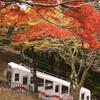 京都 比叡山の紅葉をiPhone 6s Plusで撮ってみた