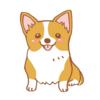 犬用【クリスマスケーキ2018】通販で買える!かわいくて無添加・安心のケーキ