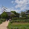 🌸足立区立都市農業公園でピクニック🍱