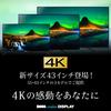 【特価情報】43インチの4Kディスプレイがなんと39,980円DMM.make(DKS-4K43D)