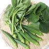 ポテンシャル高し! 宮古島の島野菜を料理する