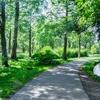 勉強効率を上げるための 自然体感とリフレッシュ法