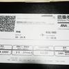 格安ANAの早朝フライト ギャラクシーフライトに乗ってみて(那覇⇒羽田)