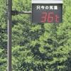 気温36度の厳しい残暑