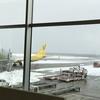 バニラエアのおかげで函館の思い出がいっぱい 〜ピーチでの函館線復活は当面なし〜