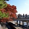 嵐山・渡月橋の秋、紅葉のある光景2017。