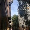 バルセロナの大聖堂に行ってきました その1