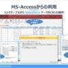 AccessのリンクテーブルからSalesforceのデータにアクセス
