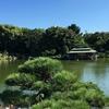深川⑥ー清澄庭園
