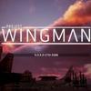 Project Wingman プレイ感想