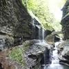 ニューヨーク州にあるワトキンスグレン州立公園でマイナスイオン300%