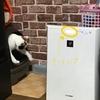 空気清浄機プラズマクラスターを使用した体験談