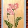 【日本画】大人の絵画教室はとてもとてもよいぞ!~お花の絵を描きました~