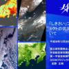 気候変動観測衛星「しきさい」(GCOM-C)観測データの提供開始に関する記者説明会