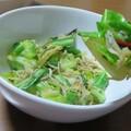 おすすめの副菜「ジャコとキャベツの炒め物」略してジャコキャベ!